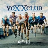 Ziwui von voXXclub