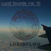 Lucid Sounds, Vol. 10 - A Fine and Deep Sonic Flow of Club House, Electro, Minimal and Techno by Various Artists
