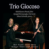 Play & Download Trios pour flûte, clarinette et piano by Trio Giocoso | Napster