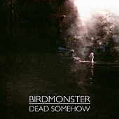 Play & Download Dead Somehow by Birdmonster | Napster