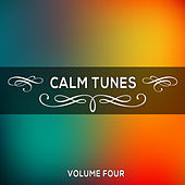 Play & Download Calm Tunes, Vol. 04 by Various Artists | Napster
