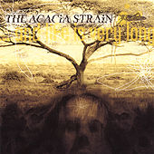 ...And Life Is Very Long by The Acacia Strain