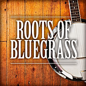 Play & Download Roots of Bluegrass by Various Artists | Napster