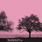 Tranquility 006 by Various Artists