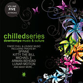 Chilled Series, Vol. 5 - Downtempo Music & Culture by Various Artists