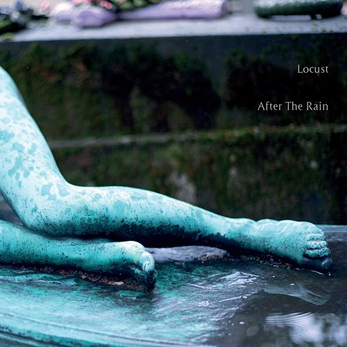 After the Rain by Locust