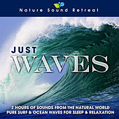 Play & Download Just Waves: 2 Hours of Sounds from the Natural World (Pure Surf & Ocean Waves for Sleep & Relaxation) by Nature Sound Retreat | Napster