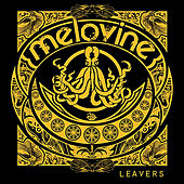 Play & Download Leavers by Melovine | Napster
