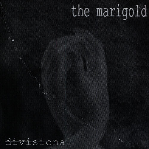Divisional by Marigold