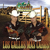 Los Gallos Más Caros by Los Cuates De Sinaloa