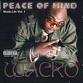Play & Download Peace of Mind: Mobb Life Vol. 1 by Wacko | Napster