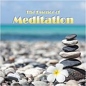 Play & Download The Essence of Meditation by Various Artists | Napster