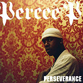 Perseverance by Percee P