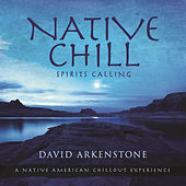Play & Download Native Chill by David Arkenstone | Napster