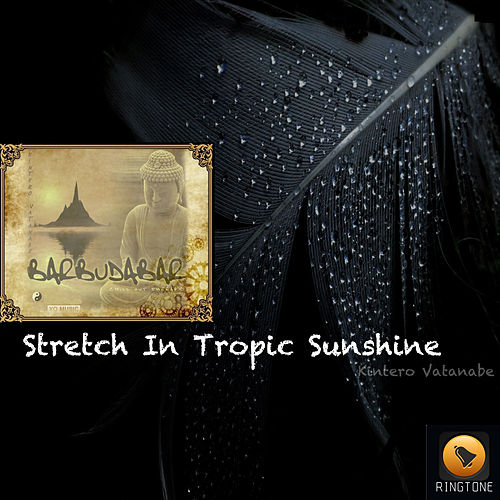 Play & Download Stretch In Tropic Sunshine by Kintero Vatanabe | Napster