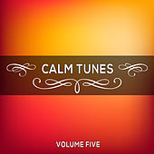 Play & Download Calm Tunes, Vol. 05 by Various Artists | Napster