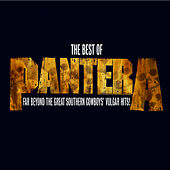 The Best Of Pantera: Far Beyond The Great Southern Cowboy's Vulgar Hits by Pantera