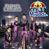 Play & Download Abriendo Caminos by Grupo Mojado | Napster