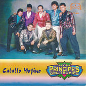 Play & Download Caballo Mojino by Los Principes Del Tropico | Napster