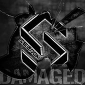 Damaged by Seldom