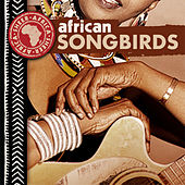 Play & Download African Songbirds by Various Artists | Napster