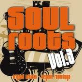 Soul Roots Vol. 3 von Various Artists