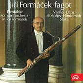 Play & Download Vivaldi, Danzi, Prokofiev, Hindemith & Sluka: Fagot by Various Artists | Napster