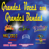 Play & Download Grandes Voces Con Grandes Bandas by Various Artists | Napster