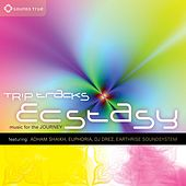 Trip Tracks: Ecstasy von Various Artists