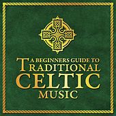Play & Download A Beginners Guide To Traditional Celtic Music by Various Artists | Napster