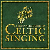 Play & Download A Beginners Guide To Celtic Singers by Various Artists | Napster