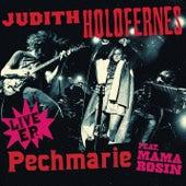 Pechmarie - EP von Judith Holofernes