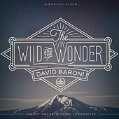 Play & Download The Wild and the Wonder by David Baroni | Napster
