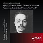Play & Download Alphons Diepenbrock: Symphonic Suite Elektra - Hymn an Die Nacht - Overture 'De Vogels' by Royal Concertgebouw Orchestra | Napster