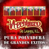 Play & Download Pura Polvadera de Grandes Exitos by Hechizero De Linares | Napster