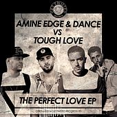The Perfect Love - Single by Amine Edge