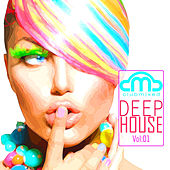 Clubmixed Deep House, Vol. 1 by Various Artists
