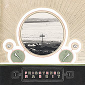 Nothing Like You by Frightened Rabbit