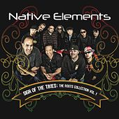 Play & Download Sign of the Times by Native Elements | Napster