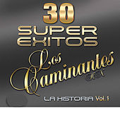 30 Super Exitos la Historia Vol. 1 by Los Caminantes