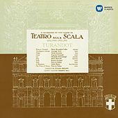 Play & Download Puccini: Turandot (1957 - Serafin) - Callas Remastered by Various Artists | Napster