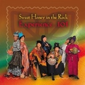 Experience 101 by Sweet Honey in the Rock