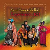 Play & Download Experience 101 by Sweet Honey in the Rock | Napster