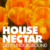 Play & Download Underground House Nectar, Vol. 7 by Various Artists | Napster