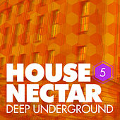 Play & Download Underground House Nectar, Vol. 5 by Various Artists | Napster