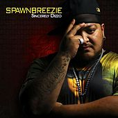 Play & Download Sincerely Dizzo by Spawnbreezie | Napster