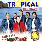 Play & Download Vallenato a la Mexicana by Tropical Del Bravo | Napster
