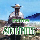 Play & Download Exitos Sin Limite by Various Artists | Napster