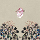 Smokey Rolls Down Thunder Canyon by Devendra Banhart