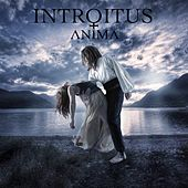 Play & Download Anima by Introitus | Napster